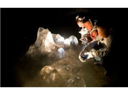 【山梨 ・河口湖 】青木ケ原樹海・洞窟探検ミステリーコース「Aコース」ご家族・お仲間で楽しめる!