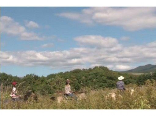 【北海道 函館 乗馬】手軽にホーストレッキング外乗 お散歩コース(30分)