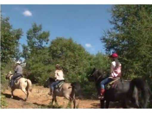 【北海道 函館 乗馬】たっぷり乗馬を楽しめる ホーストレッキング外乗 林間コース(90分)の紹介画像