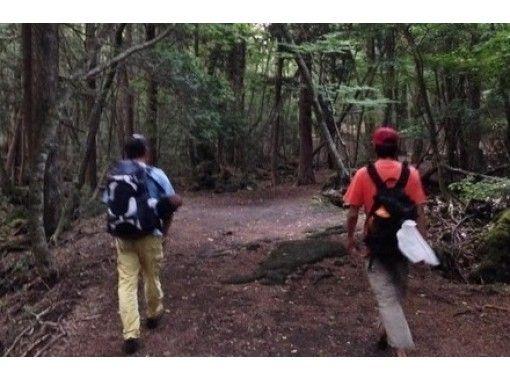 【富士山・青木ヶ原樹海】神秘の森ガイドウォークツアー!経験豊富なガイド同行