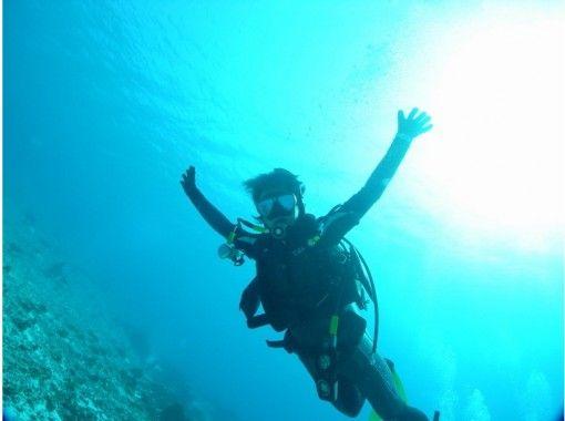 【四国・徳島】Cカード取得者限定!徳島の豊かな海を楽しむファンボートダイビング(2ボート)