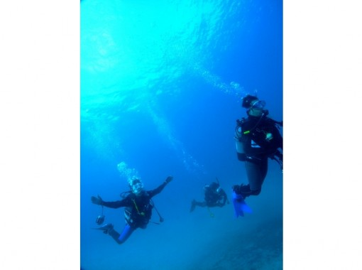 【四国・徳島】ブランクがあるダイバーの方向け!ブランクリフレッシュダイビング 1~2ビーチダイビング