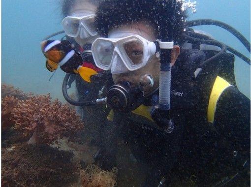 【四国・徳島】四国在住者限定!ダイビング初級ライセンス取得コースの紹介画像