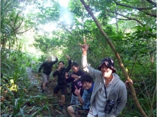 【沖縄・西表島】秘境へ行きましょ!ジャングルトレッキング&鍾乳洞探検ツアー【半日】