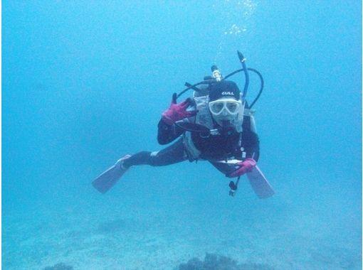 【沖縄 久米島】ファンダイビング ~久米島のホスピタリティダイビング~