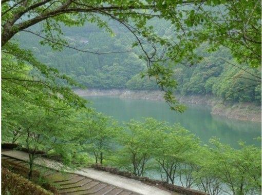 【徳島】お子様~体力に自信の無い方にもおすすめ!大自然の中でゆったりSUP体験!