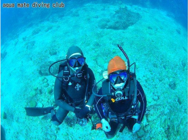 [Diving in Tokyo and Kozushima] inexperienced person, beginners welcome! Excitement of experience diving the introduction image to a high degree of transparency sea