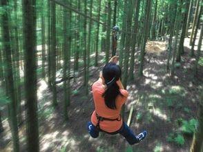 フォレストアドベンチャー・朝来(FOREST ADVENTURE ASAGO)の画像