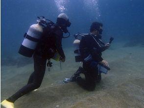 デュークダイビングサービス西伊豆(Duke Diving Service)の画像