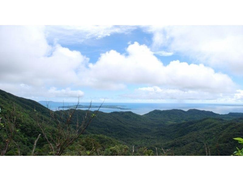 【沖縄・西表島】古見岳ジャングルトレッキング(1日コース)の紹介画像