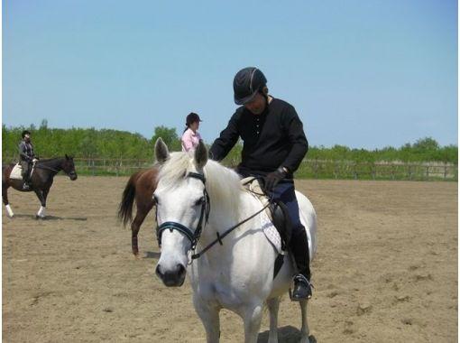 【北海道・南幌】体験乗馬コース