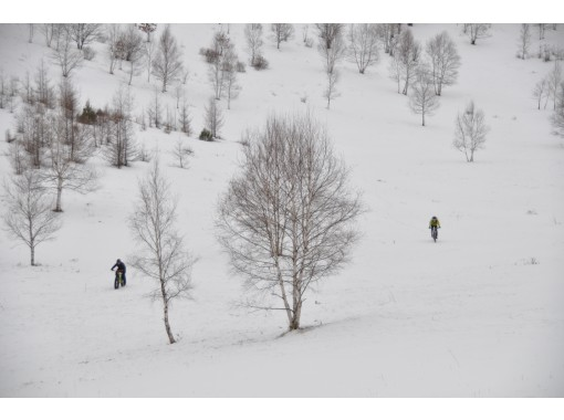 [Nagano Prefecture] Enjoy the mountains! MTB Trail Ride Guided Tour (3 persons)more Use plan in)の紹介画像
