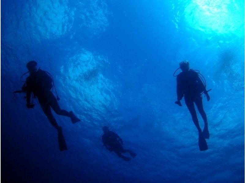 【体験ダイビング(初島)】海という名の大空へ!!体験ダイビングコースの紹介画像