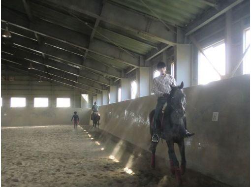 【北海道・南幌】ホーストレッキング(乗馬4回コース)の紹介画像