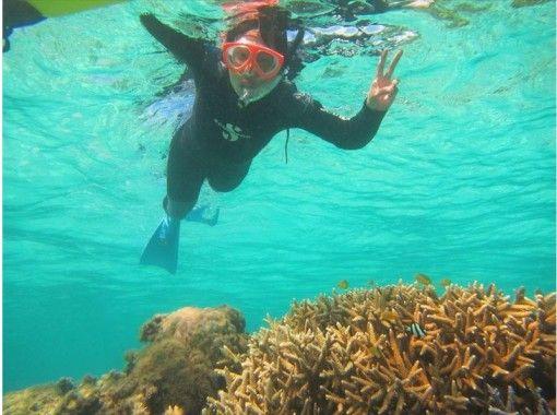 [沖縄-石垣島】有一天貪婪的海洋和島嶼享受過程(浮潛)の紹介画像
