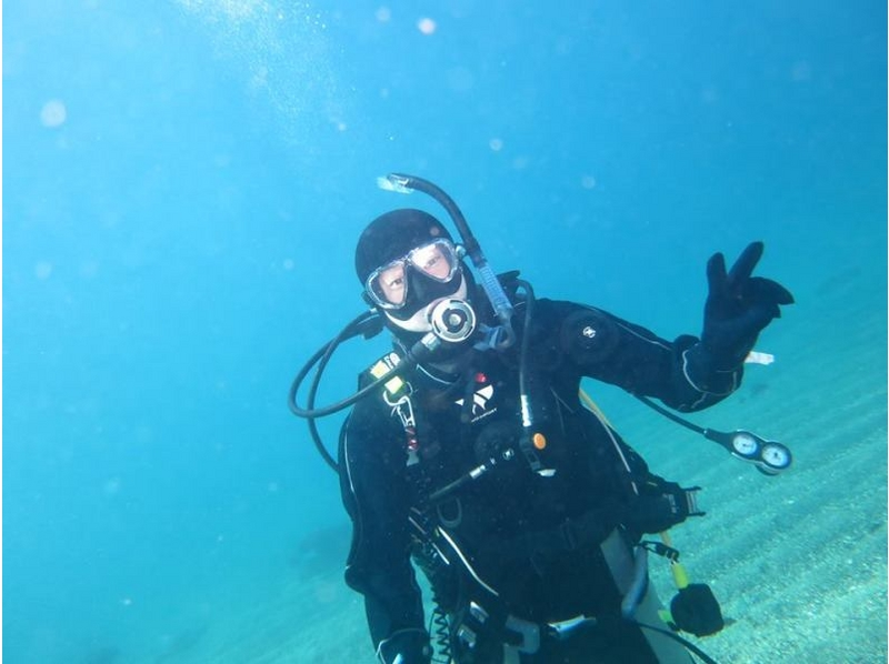 [Let's enjoy in Kanagawa, Miura added! ] Introduction image of fan dive course (additional beach one)