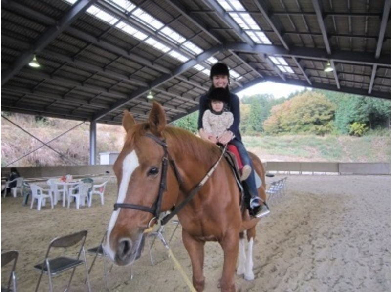 【広島県/広島・呉】初めての方も楽しめる!ひき馬体験の紹介画像