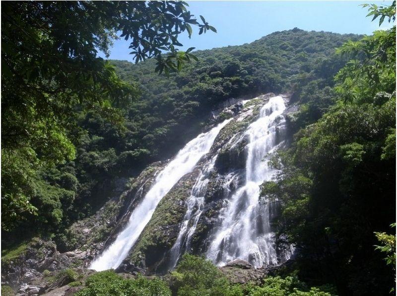 【鹿児島・屋久島】島内をぐるっと一周して滝めぐり!【約7時間】の紹介画像