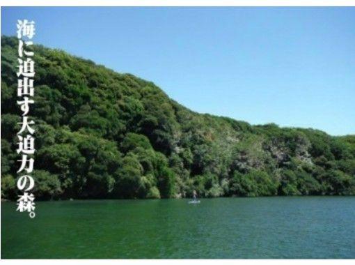 [神奈川縣三浦]合作! !伍茲和放鬆SUP旅遊的岩岸の紹介画像
