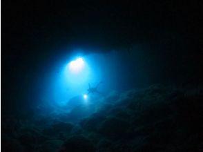 ダイビングショップ ネバーランドの画像