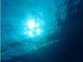 ネイティブシー奄美(Native Sea AMAMI)の画像