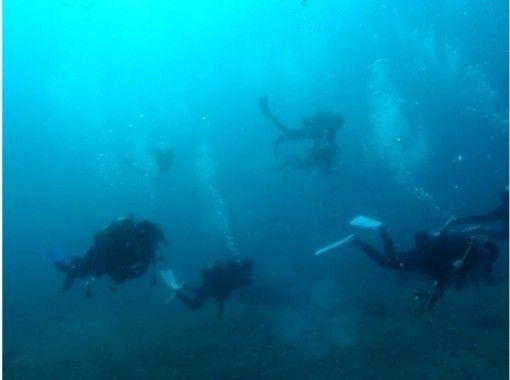 【福岡県・北九州市】本格!アドバンススクーバダイバー / Advanced Scuba Diver