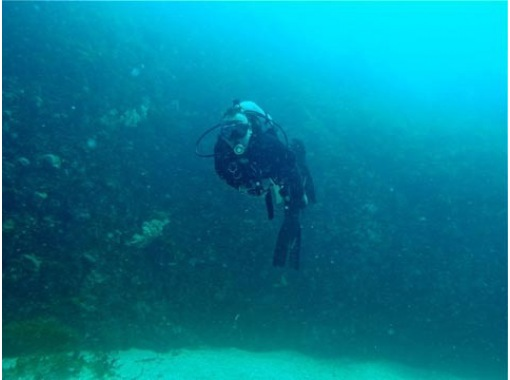 [Shimane Izumo] trying to get a license! Diving School [C] cardの紹介画像
