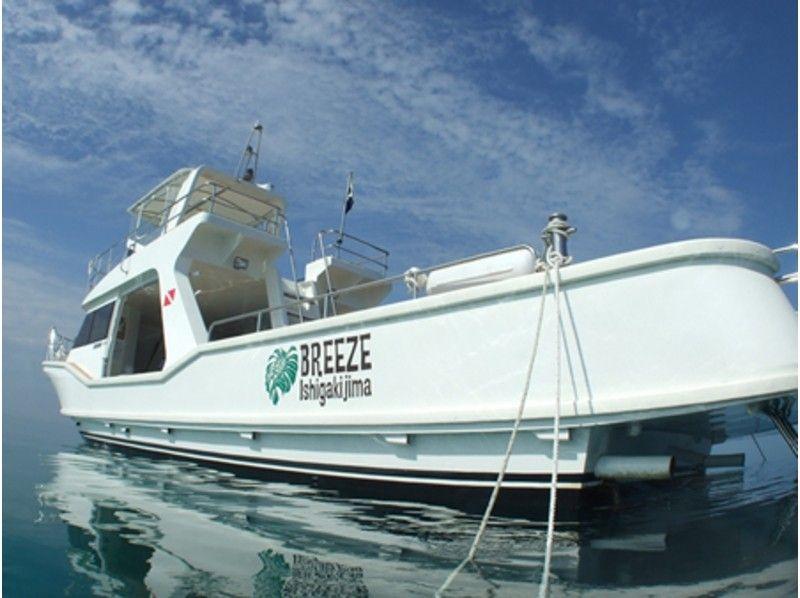 【沖縄・石垣島】マンタにサンゴに地形!リクエストOK!様々なポイントで!【3ボートファンダイビング】の紹介画像