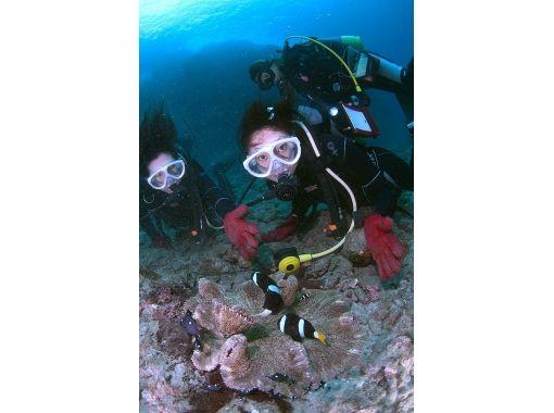 【屋久島 体験ダイビング】手軽な1ダイブコース!初めての方におススメ!綺麗な海をのんびり散策・・・