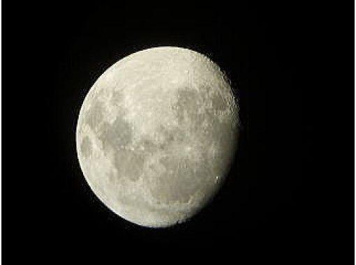 【東京・小笠原父島】夜の動植物を探索したり・天体の解説を聞いたりするナイトツアーの紹介画像