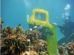 【沖縄・名護市】潜水スクーターで水中世界をドライブ!?【...