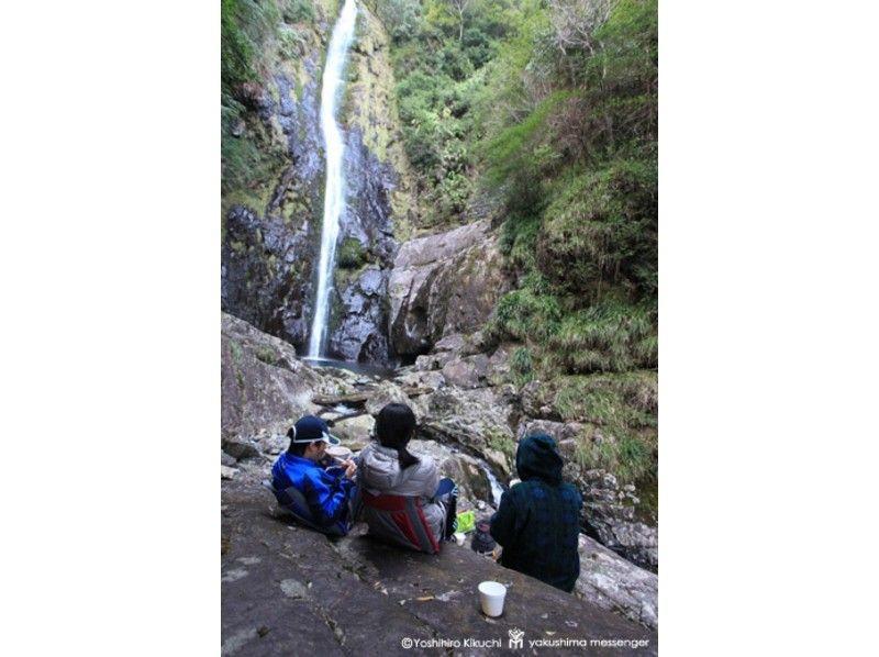 【鹿児島・屋久島】秘境の滝めぐりトレッキングの紹介画像