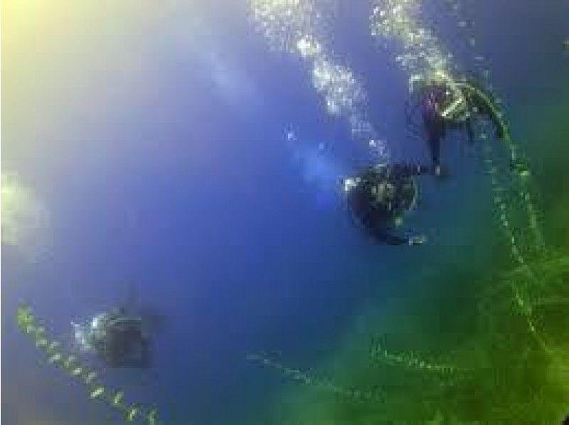 【北海道・支笏湖】水質No1の淡水湖でのファンダイビング【2ダイブ・3時間】の紹介画像