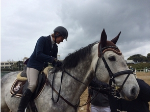 むなかた乗馬クラブ(MUNAKATA HORSE RIDING CLUB)の画像