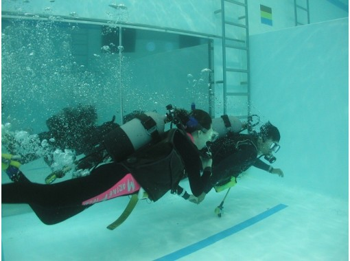 【大阪】ダイビング技術に不安がある方向け!ダイビング・スキルアップコース!の紹介画像