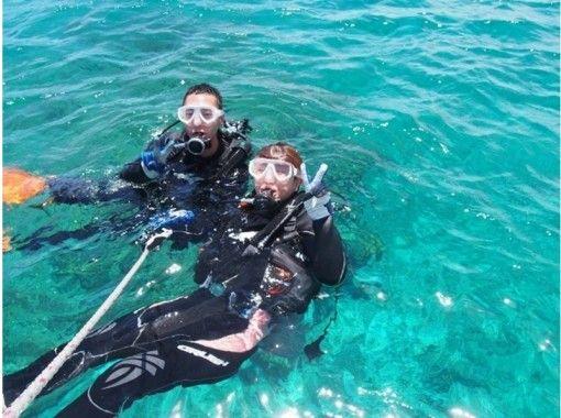 【沖縄・水納島】海水浴ダイビングプラン