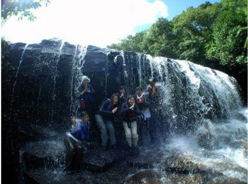 [沖縄西表島/ Sangara瀑布]你可以在瀑布鍋和瀑布的背面玩!半日獨木舟和徒步旅行の紹介画像