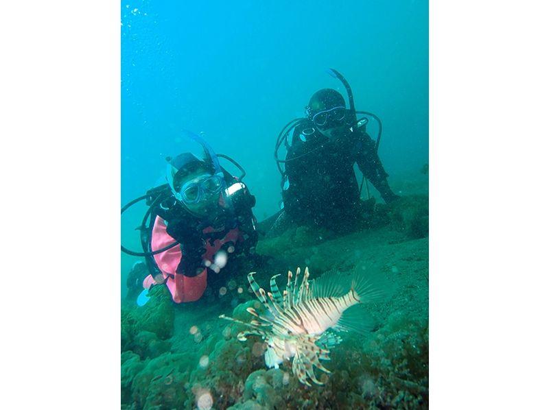 【東京・目黒】海の中の楽しさを体感しよう!!体験ダイビングの紹介画像