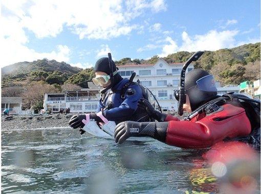 【東京・目黒】海の中の楽しさを体感しよう!!体験ダイビング