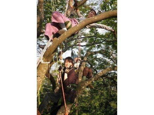 【滋賀・高島】琵琶湖の水源の森で木と遊ぶ!インストラクターが案内する貸切の木登りツアー[VBC]の紹介画像