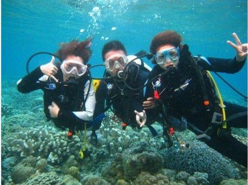 【四国】珊瑚と熱帯魚の四国の海で、じっくり2本!!日帰り体験ダイビング
