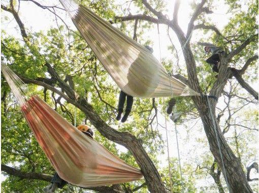 【滋賀・高島】ハンモックで森の時間を満喫する木登りツアー ツリーカフェ [VSC]の紹介画像