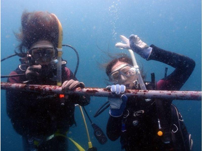 【静岡・西伊豆・雲見】未経験者、初心者歓迎 素晴らしい海へ体験ダイビング【1ダイブ or 2ダイブ】の紹介画像