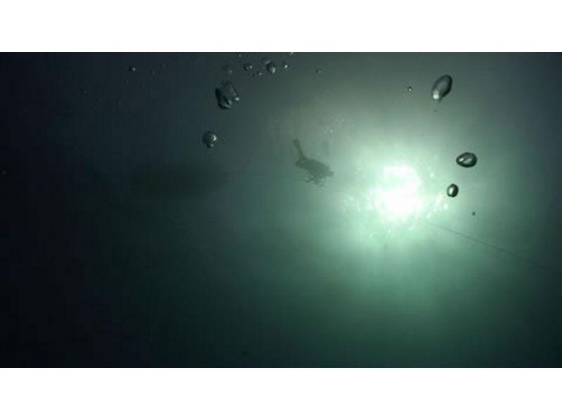 【千葉 館山】めいっぱい遊んで経験豊富に!ガイド付きボートダイビング(1ボート)の紹介画像