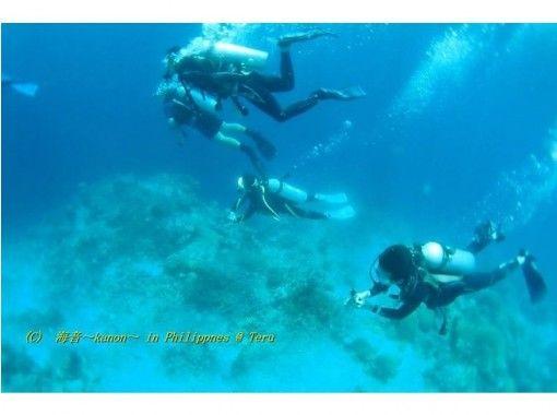 對於許可證獲取者!通過風扇深潛伊豆半島的海洋! (2潛水)【1 日 】の紹介画像