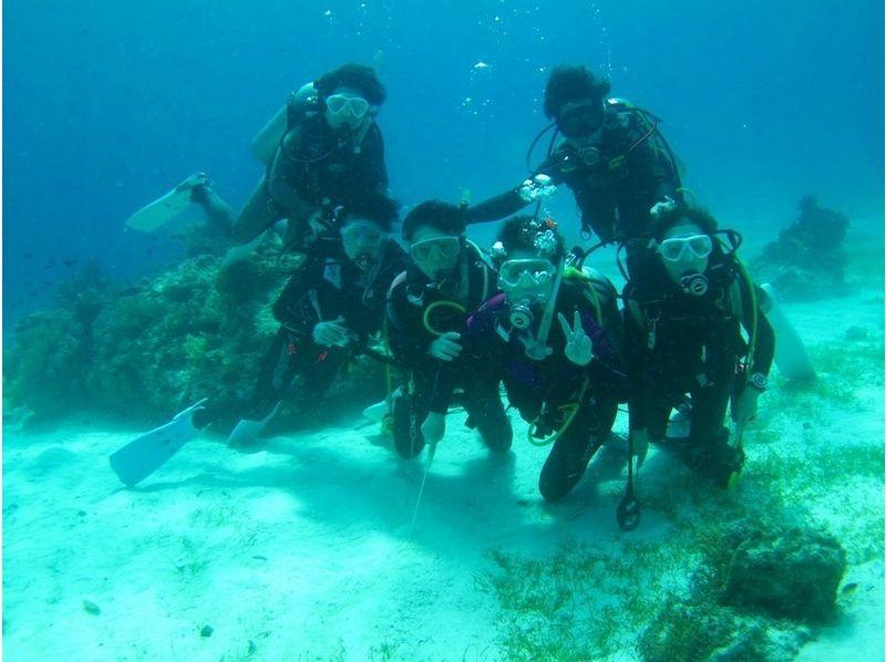 【神奈川・横浜】伊豆の海で遊ぼう!!体験ダイビング【1日】の紹介画像