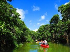 冒険島の画像