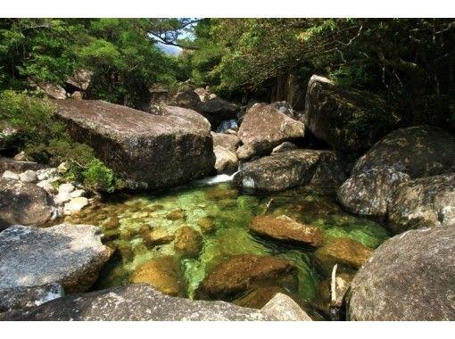 【鹿児島・屋久島】トレッキング蛇之口滝コース