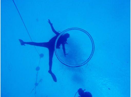 【島根・大田】初めての方でも安心・安全 体験ダイビング【3時間】