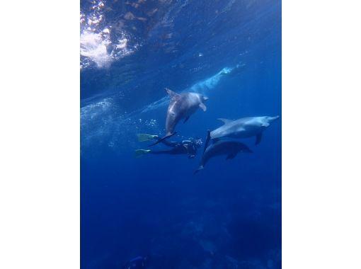[Tochigi Prefecture, Oyama City] snorkeling to enjoy on a day tripの紹介画像